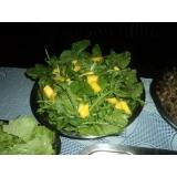 churrasco em domicílio com prato de saladas valor Santa Isabel